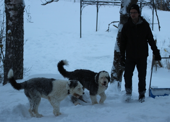 Pojat lumitöissä
